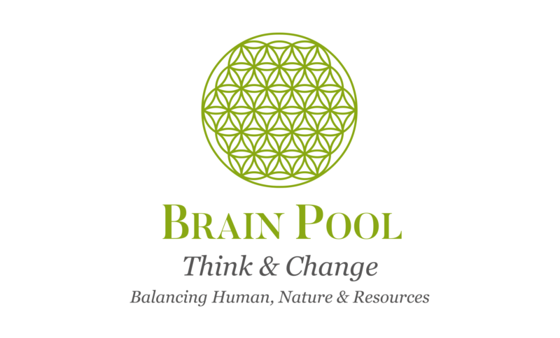 Brain Pool Limited